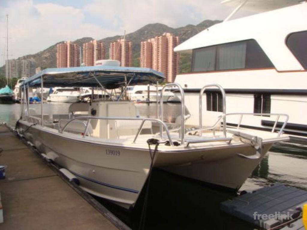 36 Twin Vee Catamaran