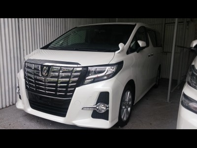 Toyota Alphard SA Package